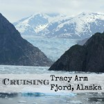 Cruising through Tracy Arm Fjord, Alaska