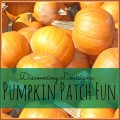 Discovering Louisiana: Pumpkin Patch Fun #mrsheatherpumpkinpatch #louisiana #fall #bucketlist | mybigfathappylife.com