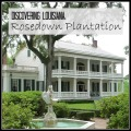 Discovering Louisiana: Rosedown Plantation in St. Francisville, Louisiana | mybigfathappylife.com
