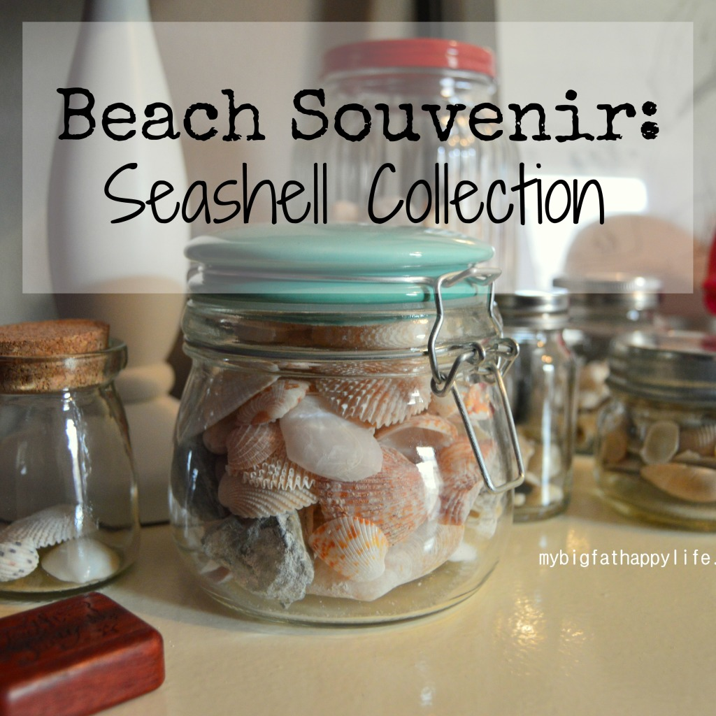 Beach Souvenir: Seashell Collections | mybigfathappylife.com