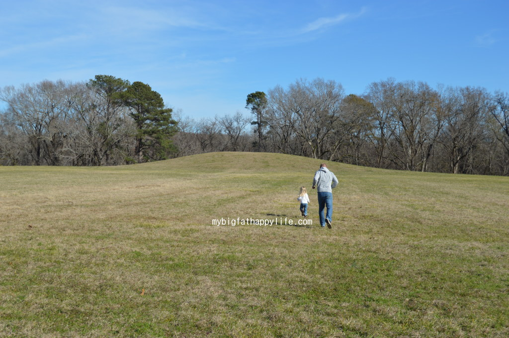 Natchez Trace Parkway in Mississippi; first 30 miles from Natchez including Windsor Ruins, Emerald Mound and Mount Locust | mybigfathappylife.com