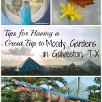 Tips for Having a Great Trip to Moody Gardens + Coupon Code (Expired)