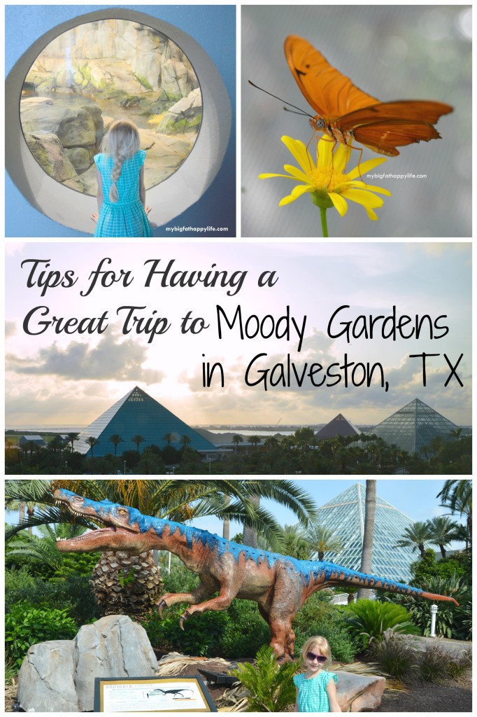 Tips For Having A Great Trip To Moody Gardens Coupon