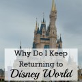 Why Do I Keep Returning to Walt Disney World; Magic Kingdom, Epcot, Hollywood Studios and Animal Kingdom | mybigfathappylife.com