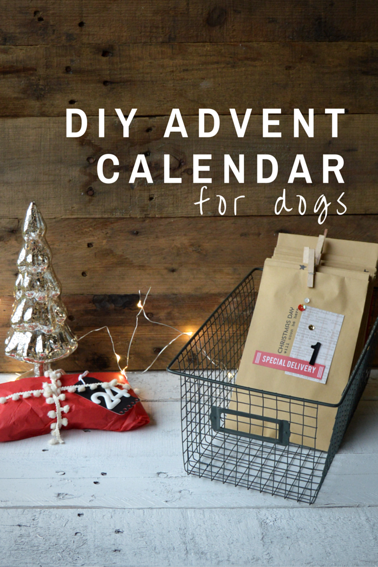 Calendar Advent Diy : Diy advent calendar for dogs my big fat happy life