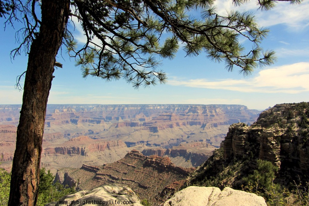 Where You Should Go On Summer Vacation - Grand Canyon, National Park Service | mybigfathappylife.com