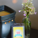 Remembering Your Disney World Trip with Pixie Scent Wax Tart