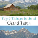 Top 6 Things to Do in Grand Teton National Park