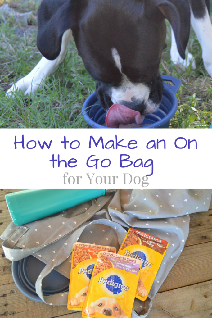 How to Make an On the Go Bag for Your Dog #PedigreeMoment #ad | mybigfathappylife.com