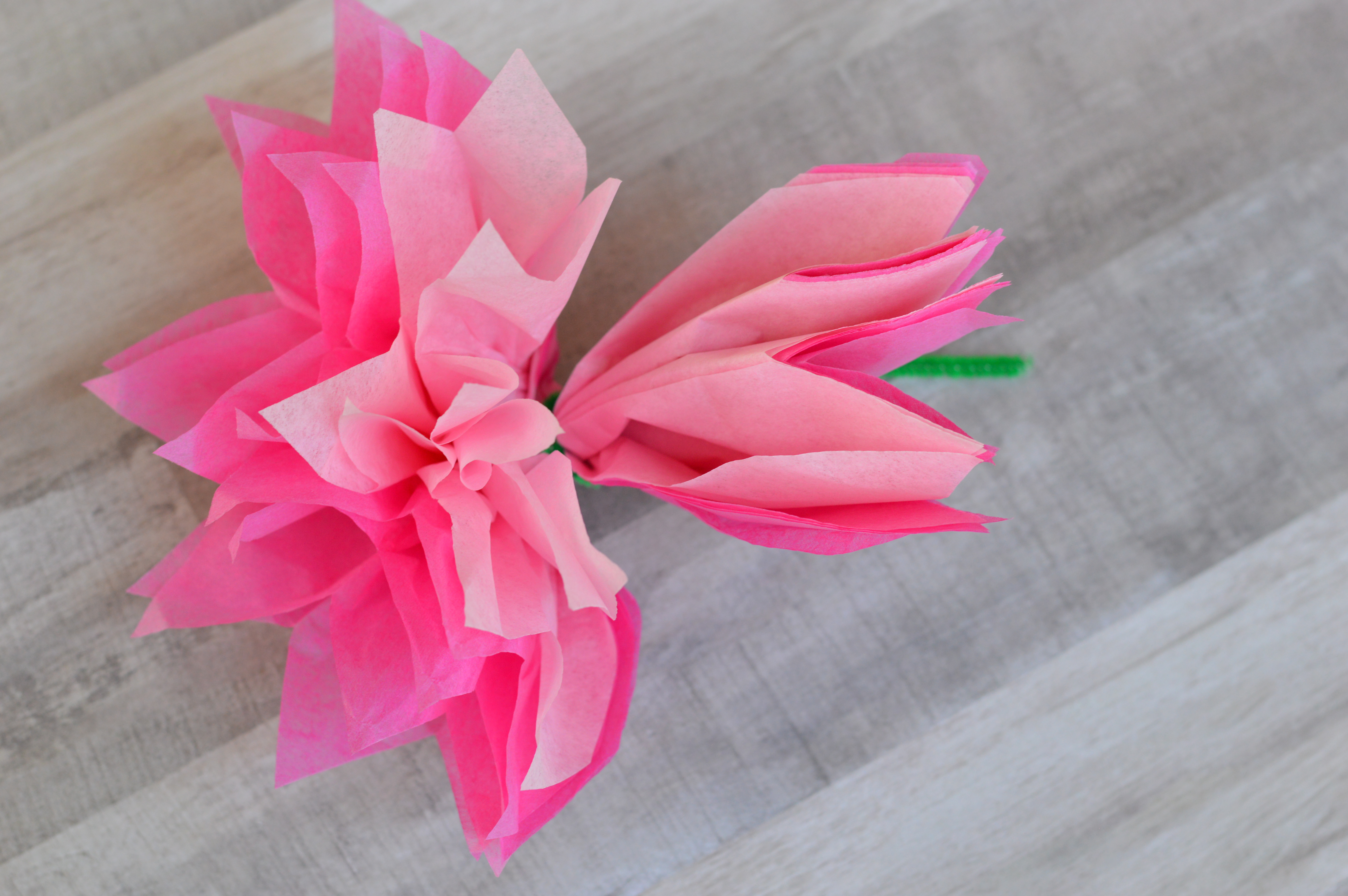 Tissue Paper Flowers for Mother's Day - My Big Fat Happy Life