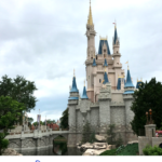 Tips for Surviving a Trip to Disney World in Summer