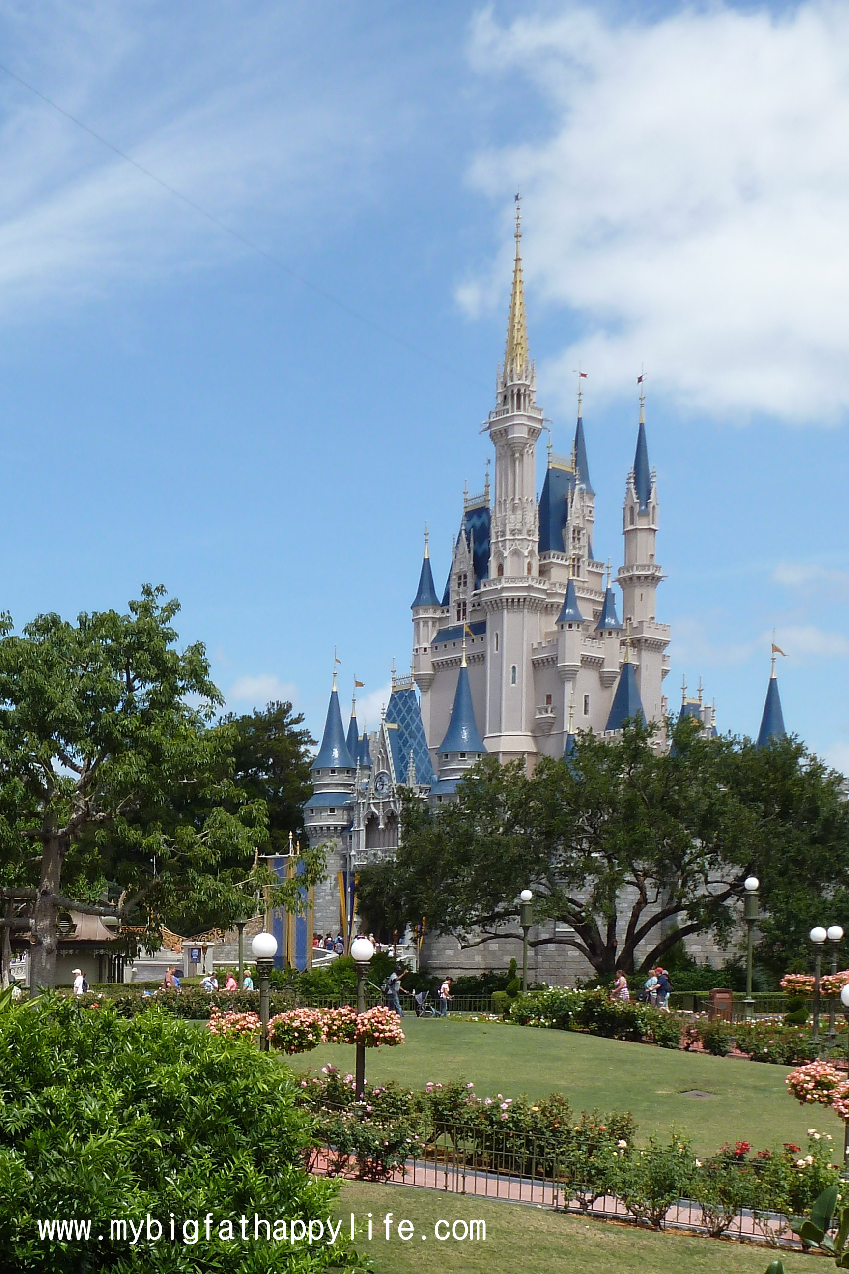 Cinderellas Castle Photo Ideas At Magic Kingdom Disney World