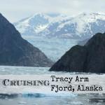 Cruising through Tracy Arm Fjord, Alaska
