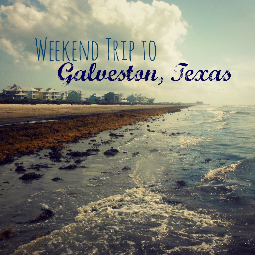 Cheap Cruises Out Of New Orleans La: Weekend Trip To Galveston, Texas