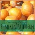 Discovering Louisiana: Pumpkin Patch Fun #mrsheatherpumpkinpatch #louisiana #fall #bucketlist | mybigfathappylife.com