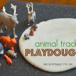Animal Tracks + Snow Playdough
