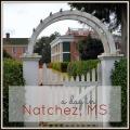 A Day in Natchez #mississippi #natchez #daytrip #travel   mybigfathappylife.com