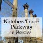 Natchez Trace Parkway – Natchez, Mississippi