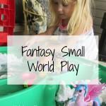 Fantasy Small World