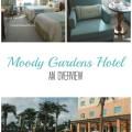 Moody Garden Hotel - An Overview; Galveston, Texas | mybigfathappylife.com