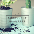 DIY Succulent Planters, perfect for inside your house on the kitchen windowsill | mybigfathappylife.com