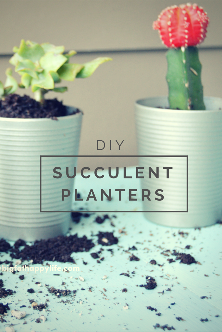 DIY Succulent Planters, Perfect For Inside Your House On The Kitchen  Windowsill | Mybigfathappylife.