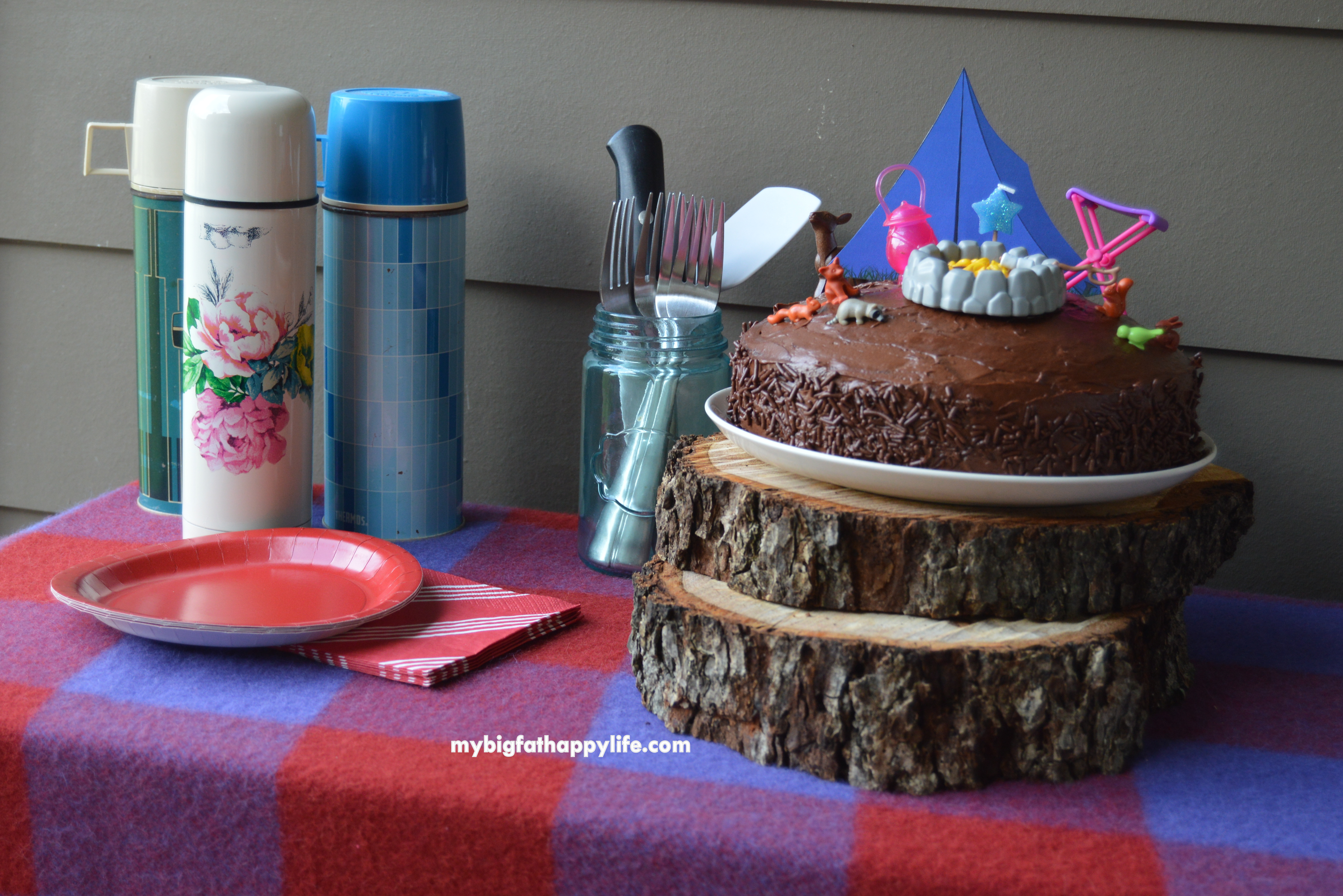 Camping Themed Birthday Party My Big Fat Happy Life