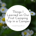 Things I Learned on Our First Camping Trip in a Camper   mybigfathappylife.com