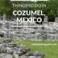 Things to do in Cozumel, Mexico - San Gervasio Mayan Ruins, The Mayan Cacao Company and Discover Mexico | mybigfathappylife.com
