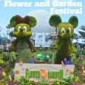 8 Tips for Epcot's International Flower and Garden Festival, Walt Disney World | mybigfathappylife.com