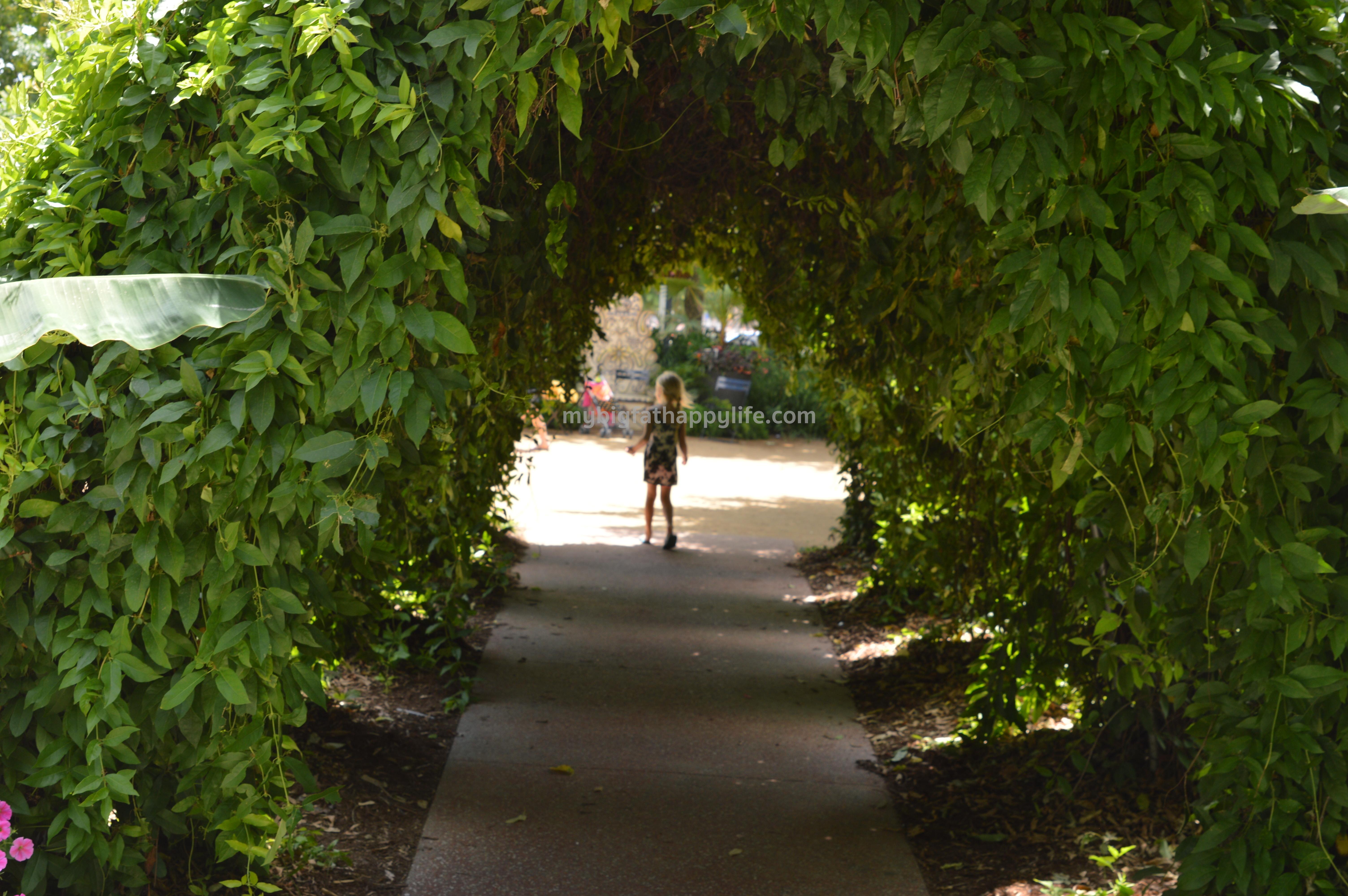 Oklahoma city botanical gardens hours garden ftempo for Oklahoma city botanical gardens