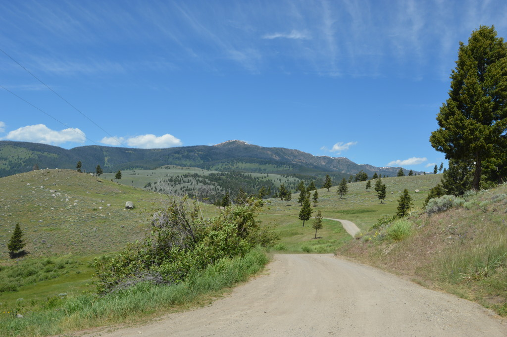 Horseback Riding / Trail Riding near Yellowstone National Park in Gardiner, MT | mybigfathappylife.com
