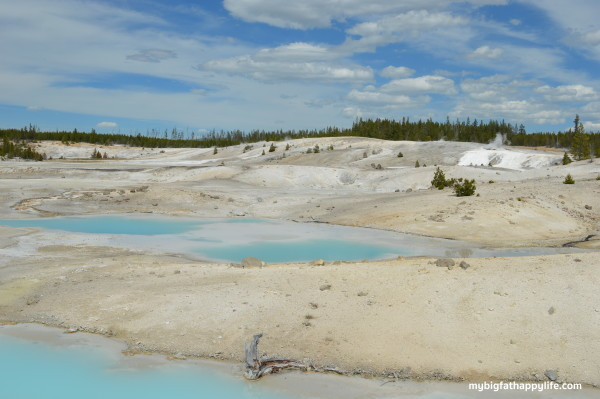 Camping Near Yellowstone and Grand Teton National Parks, Headwaters Campground at Flagg Ranch   mybigfathappylife.com