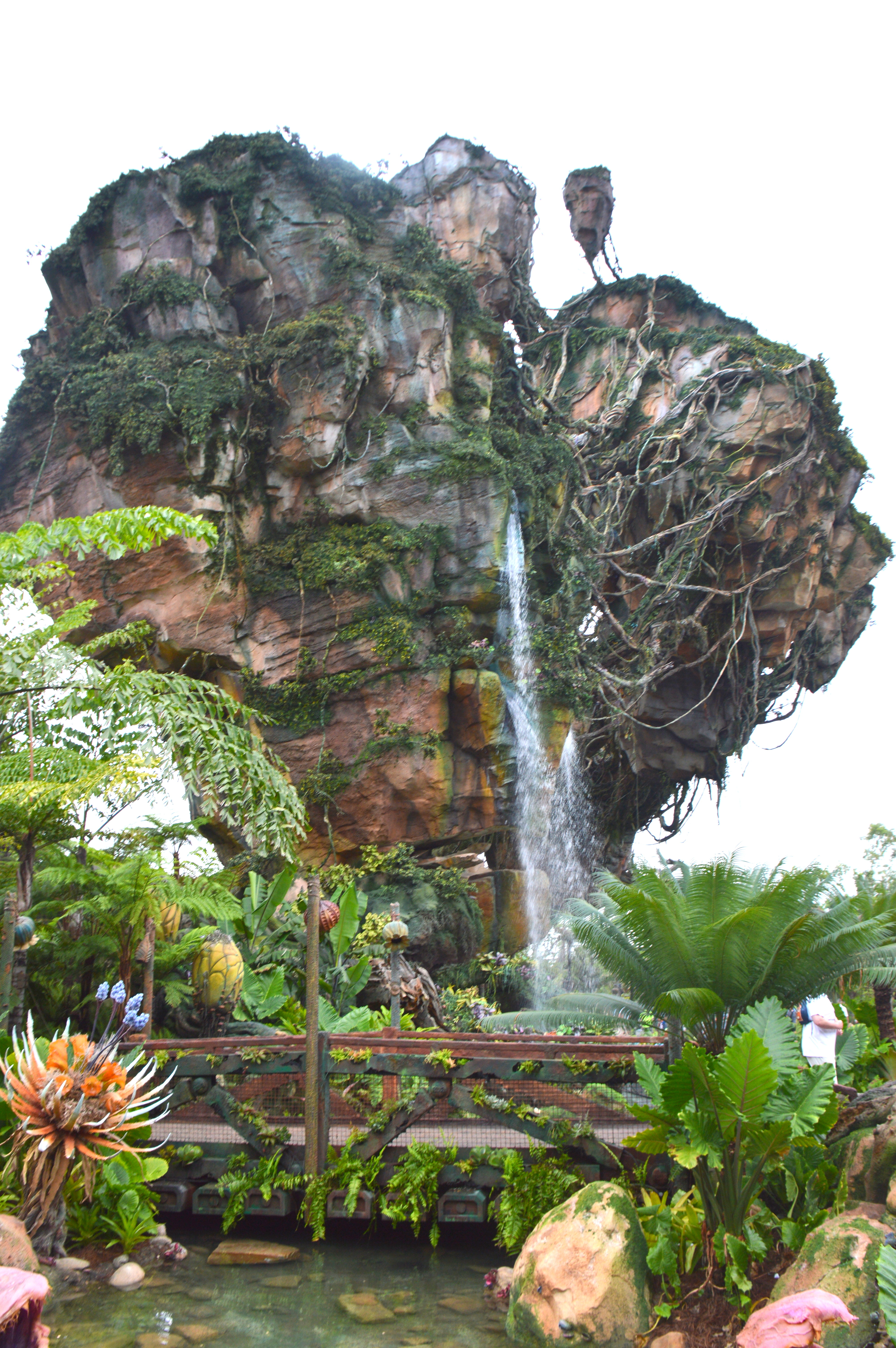 5 Things You Have to Experience at Pandora (Animal Kingdom ...