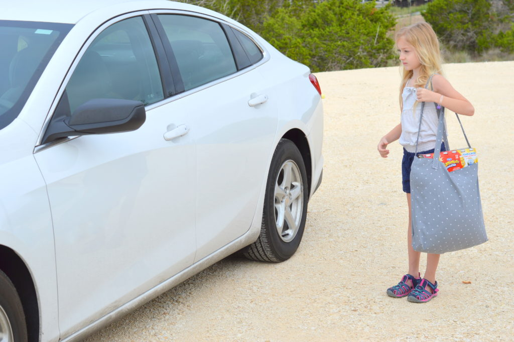 7 Essentials for Your Family Road Trip