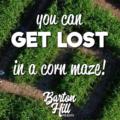 Barton Hill Farms Fall Festival and Corn Maze #ad | mybigfathappylife.com