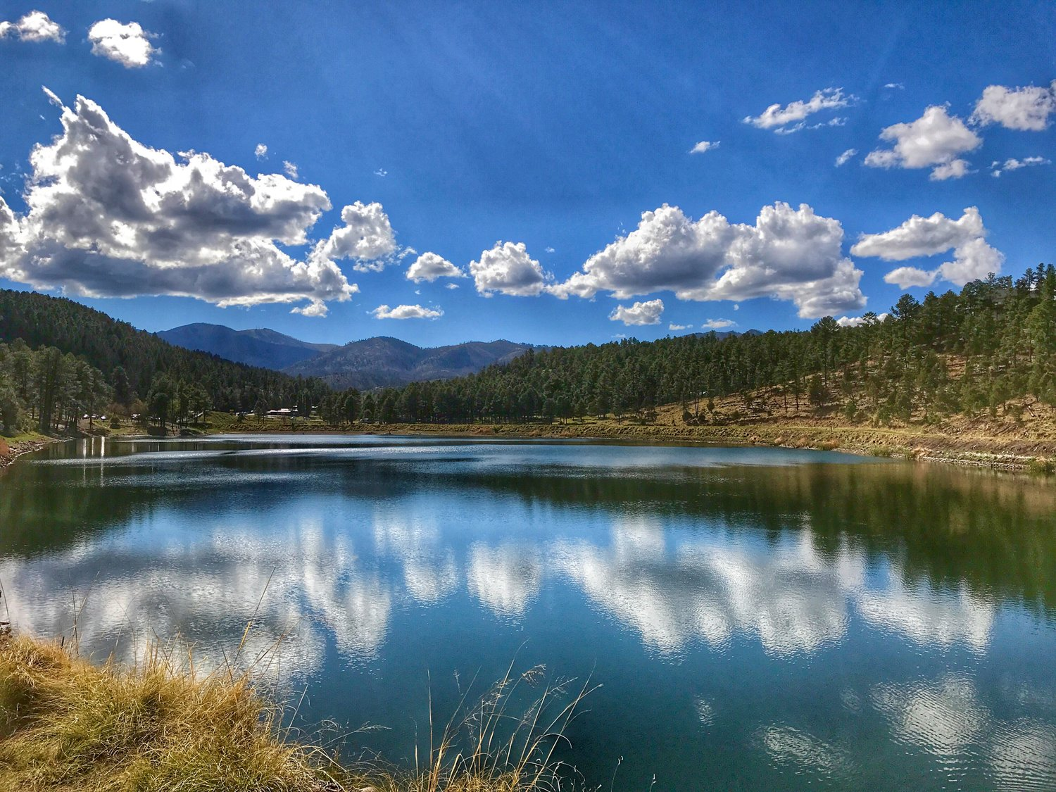 6 Things to do in Ruidoso, New Mexico for the Adventurous Family - My Big Fat Happy Life