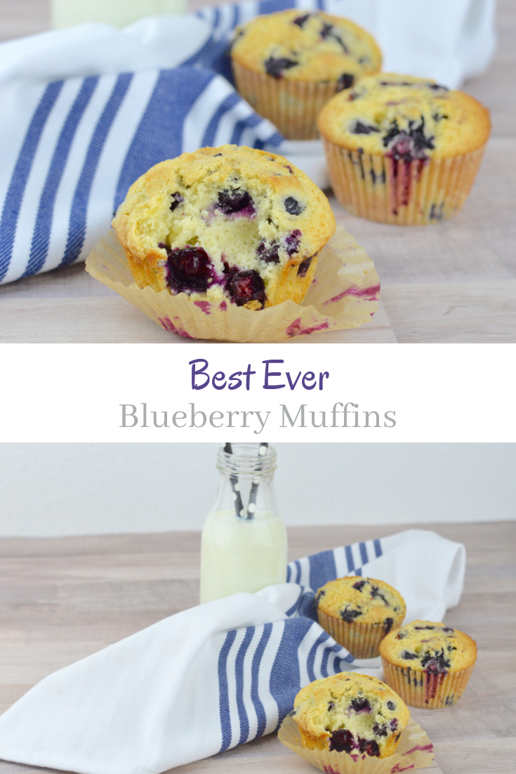 Best Ever Blueberry Muffins My Big Fat Happy Life